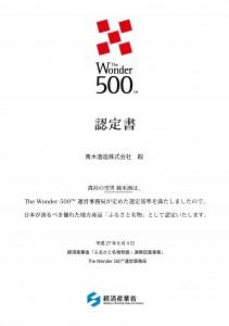 Wonder500